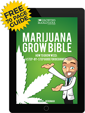 Marijuana Grow Guide (Free E-Book)