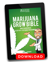 marijuana grow bible guide