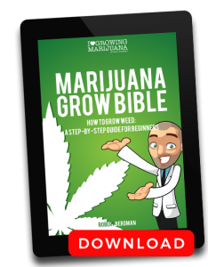 download marijuana grow bible