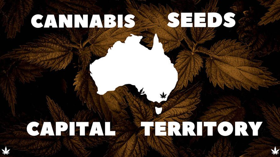 Cannabis-Seeds-Australian-Capital-Territory-Banner
