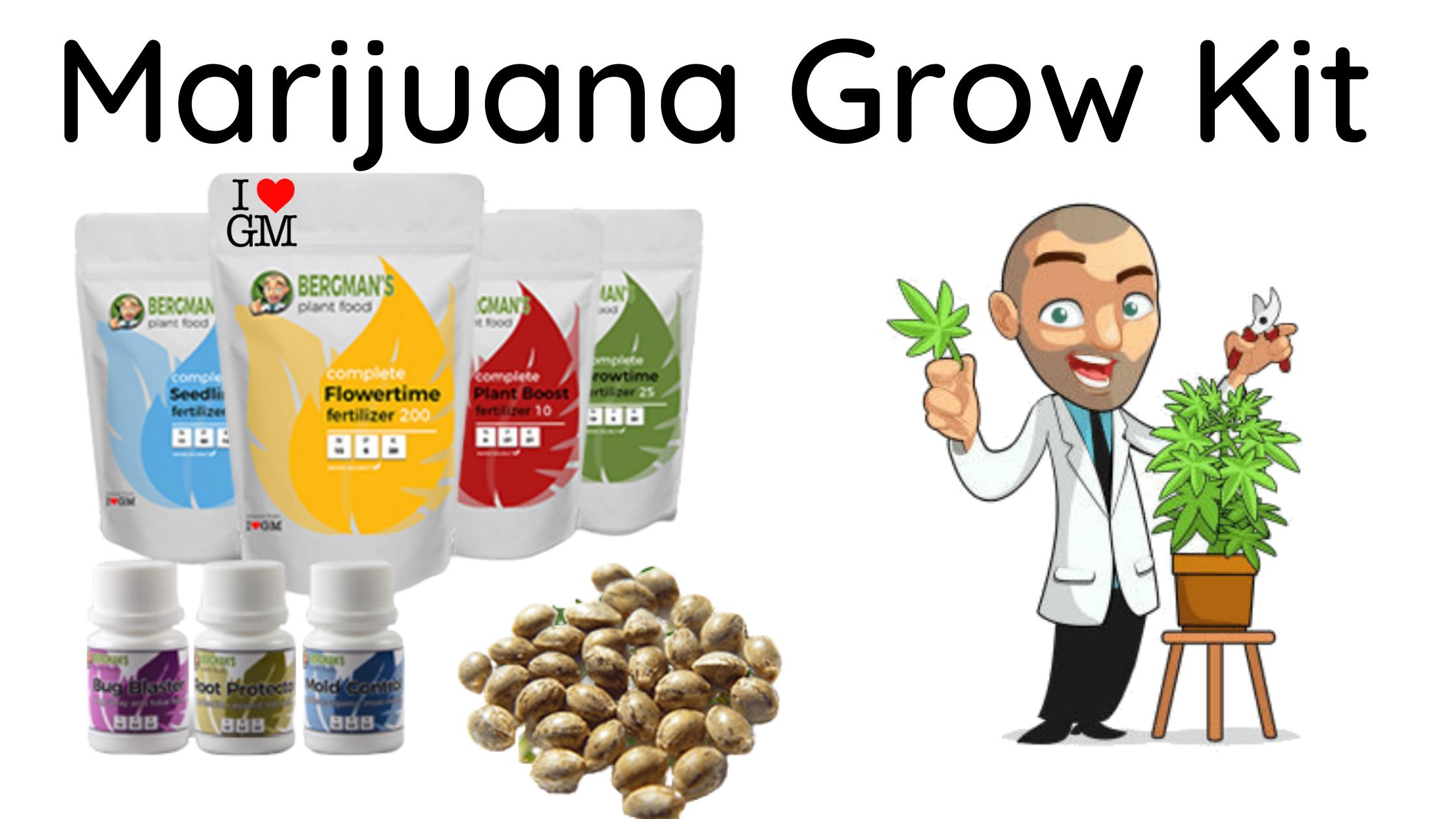 Marijuana Grow Kit for Beginners